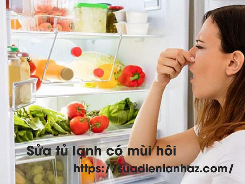 Sửa tủ lạnh có mùi hôi giá rẻ